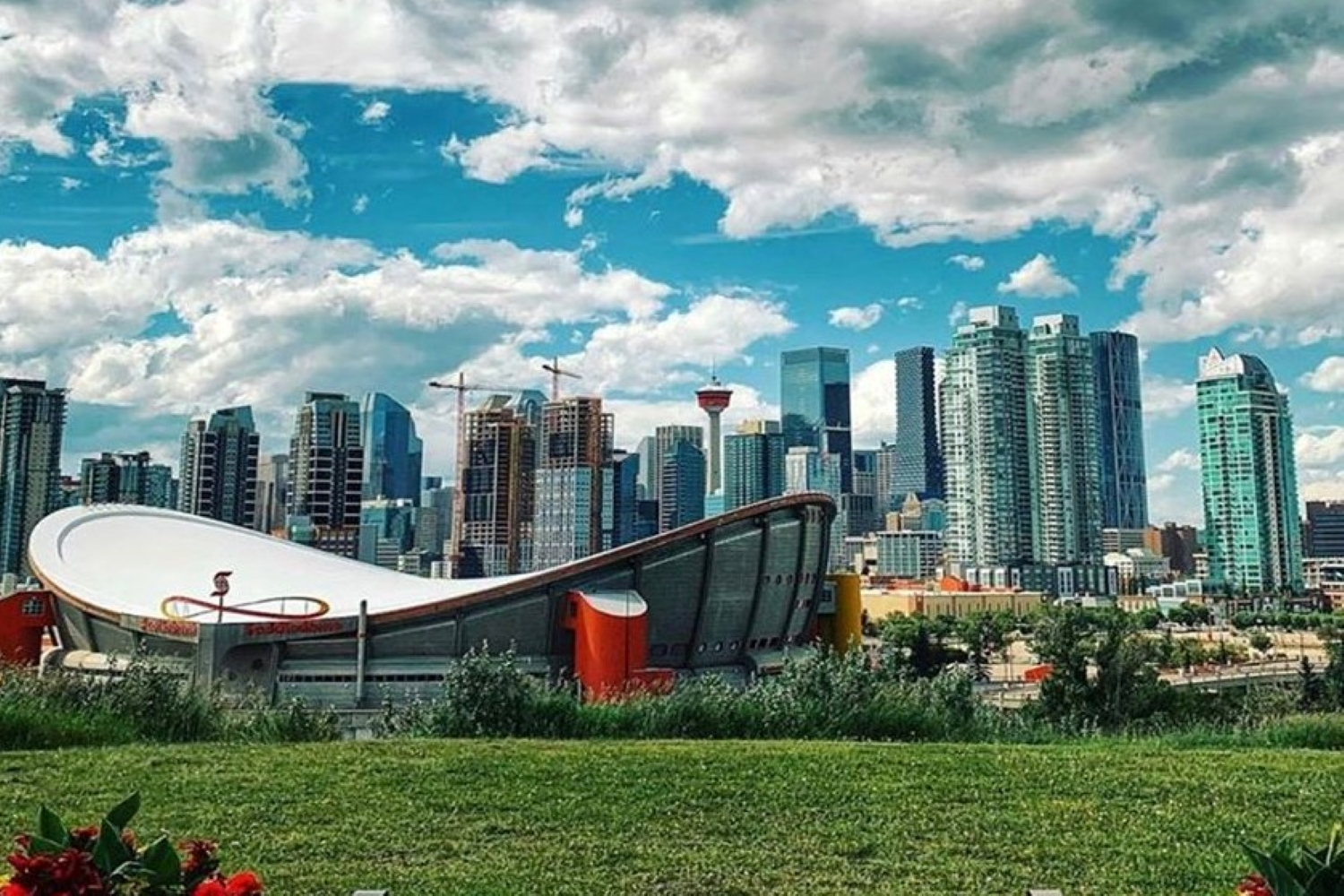 These neighbourhoods were voted the best in Calgary for 2020