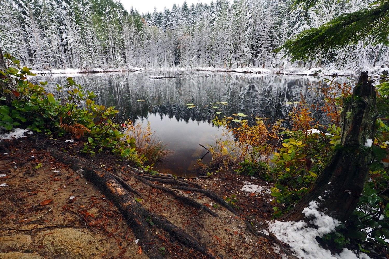 winter hikes seattle
