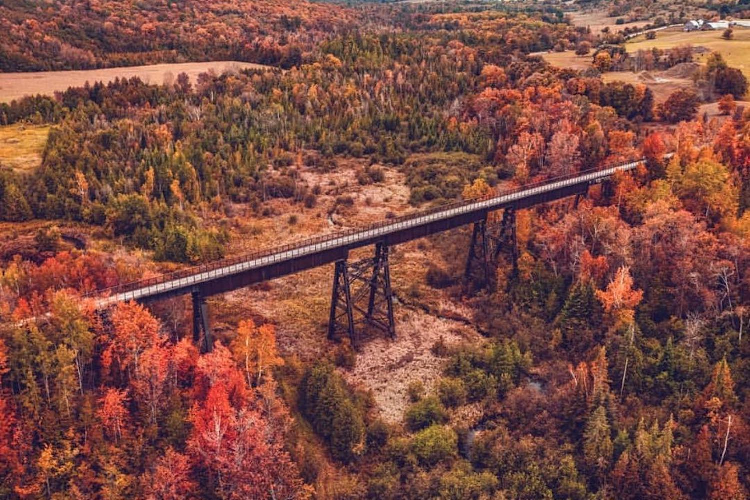 Guide: 8 of the best places to see fall colours in Ontario