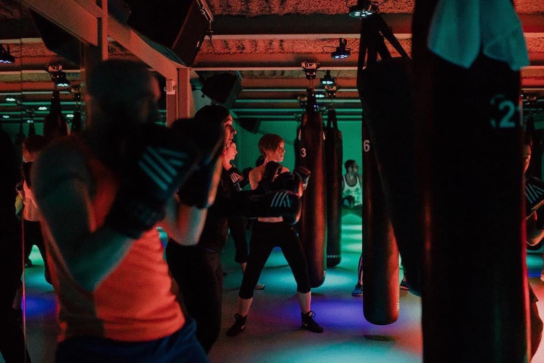 undrcrd boxing