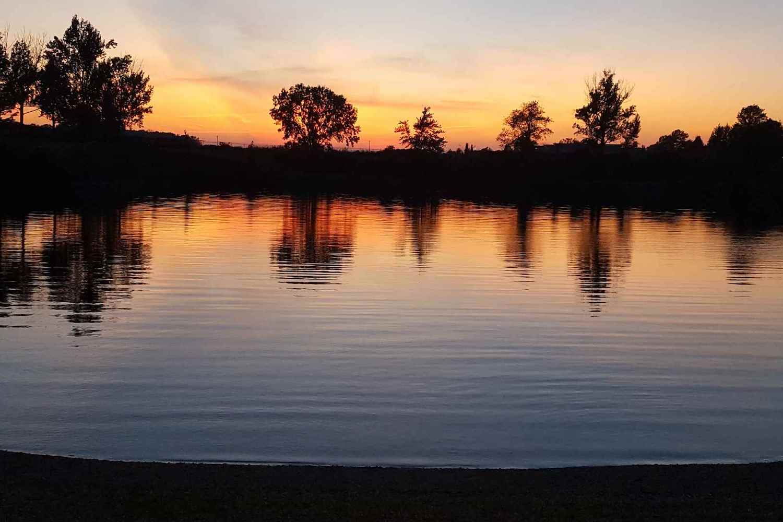 trout lake swimming
