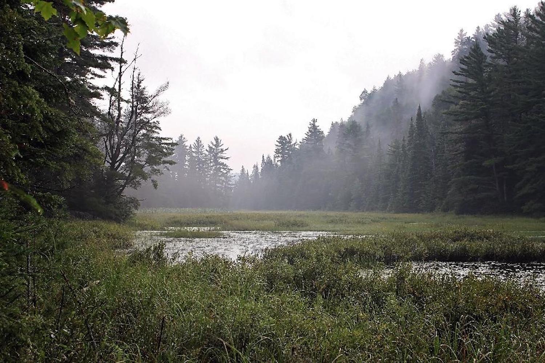 mizzy lake hike