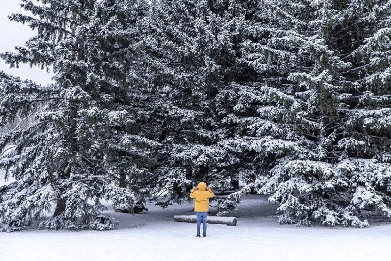 best winter walks calgary