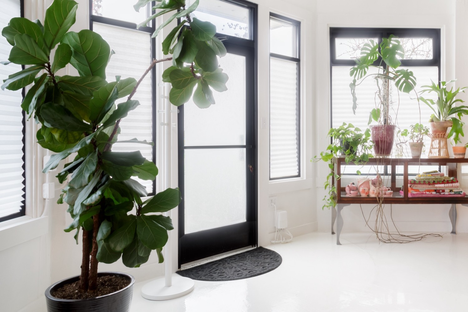 seattle airbnbs