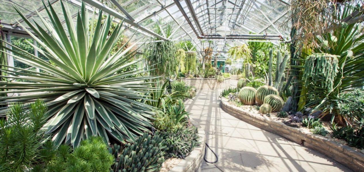 public gardens in toronto