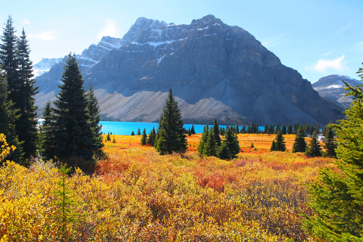 fall colours alberta banff