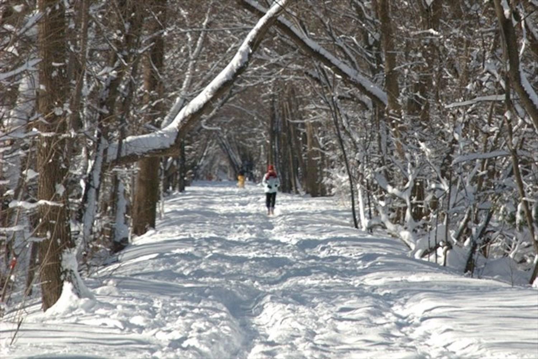 winter walks
