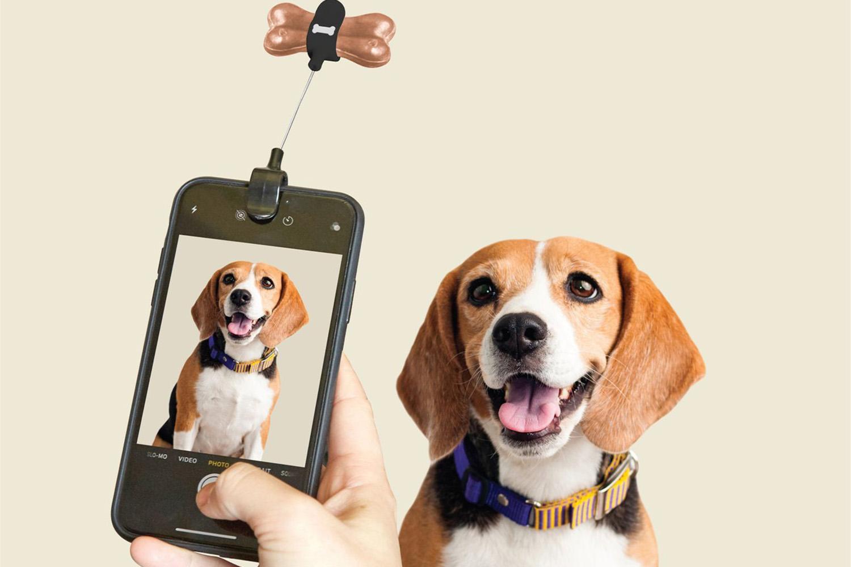 TELUS spark gifts dog selfie
