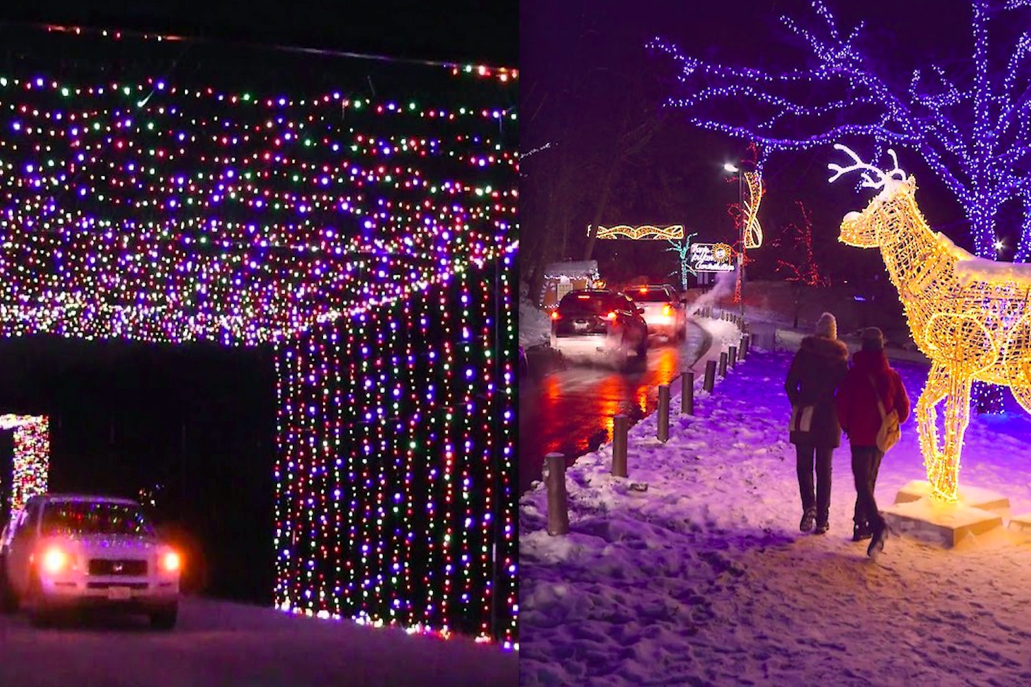 Christmas Events Toronto 2021 Here Are All The Holiday Drive Thru Light Displays Arriving Soon Around The Gta Curiocity Group Inc