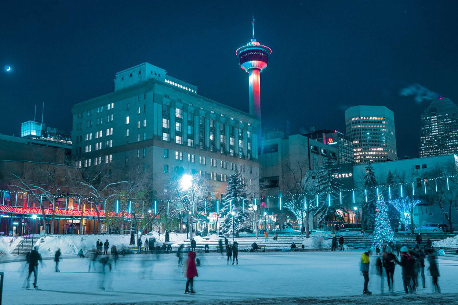 things to do in calgary this december