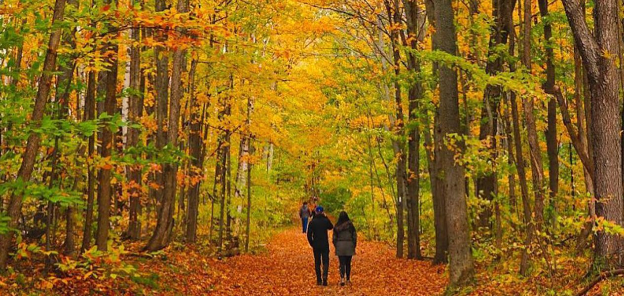 mono cliffs, couple walking in fall