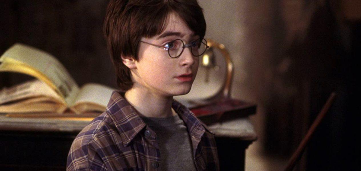 Harry Potter tv series