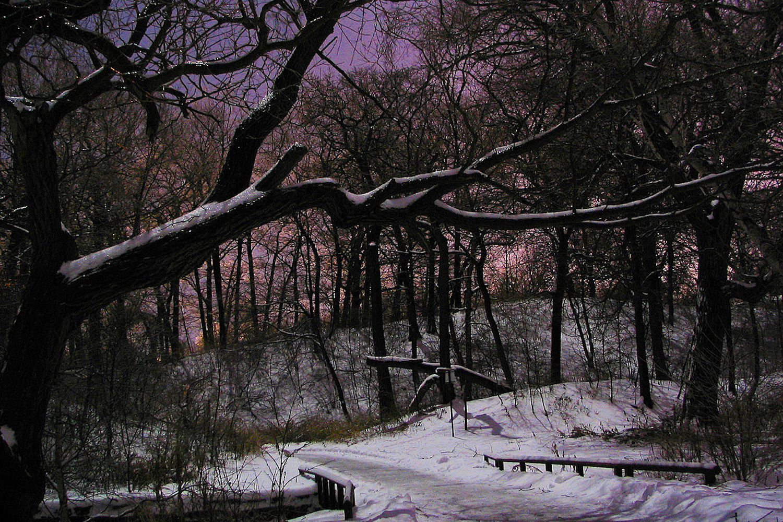 winter maintenance toronto parks