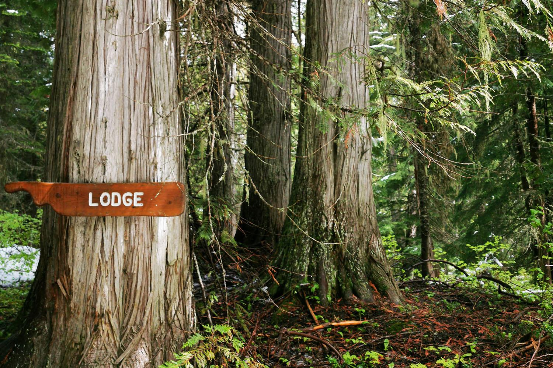 island lake lodge trail