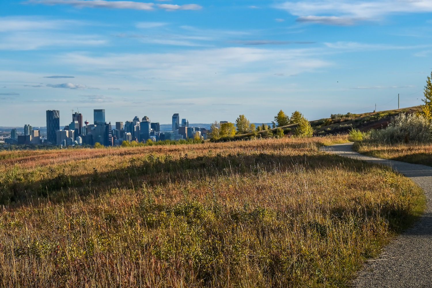 nose hill park fall colours alberta