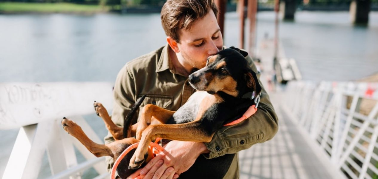 Here is North America's top 100 most popular dog names of 2020