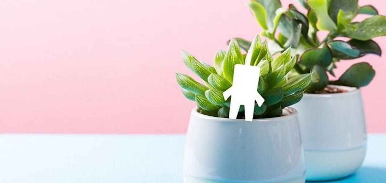 gaia plants
