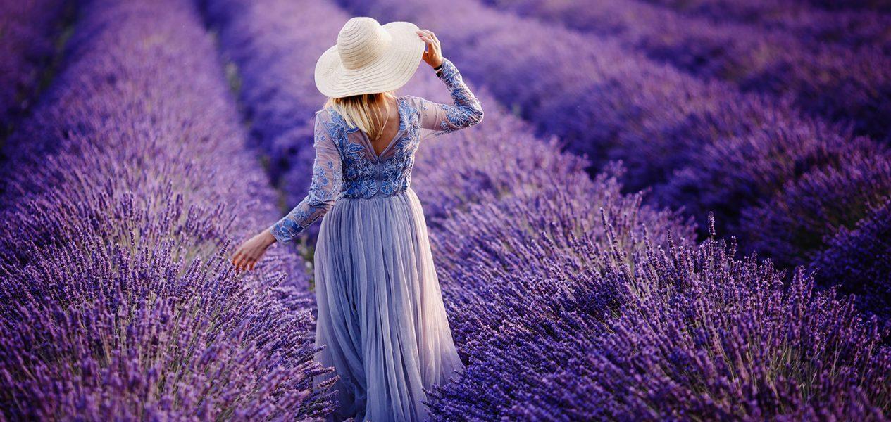 richmond lavenderland