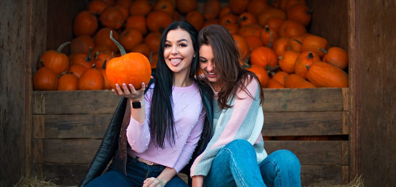 calgary pumpkin patches