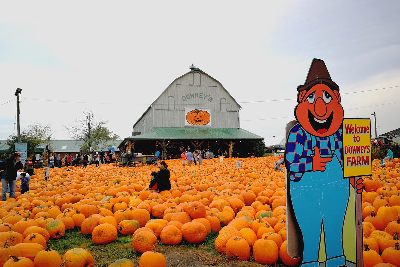 downey's farm weekend fall getaways toronto