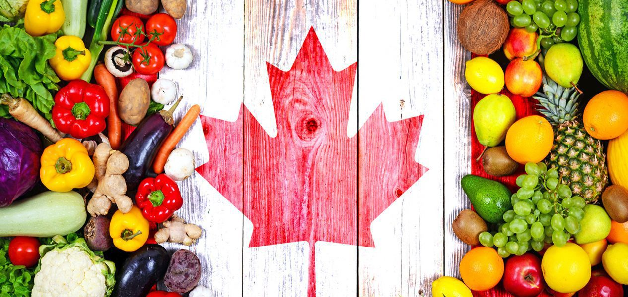 Canada named one of the top 10 countries in the world for veganism