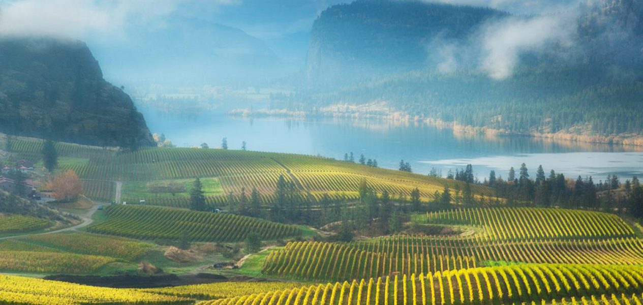 south-okanagan-best-places-to-retire-in-canada