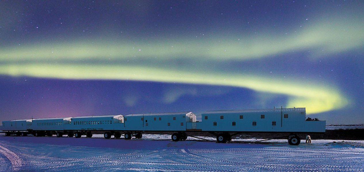 tundra lodge polar bear hotel tours