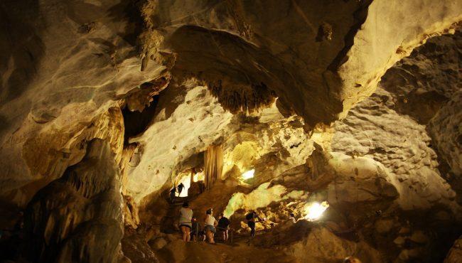 gardener cave