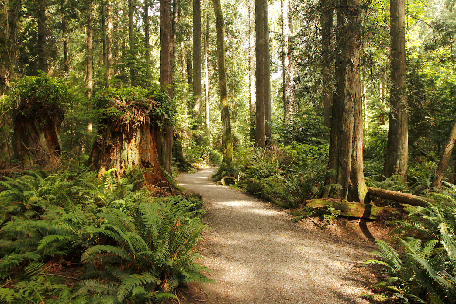 spring hikes vancouver
