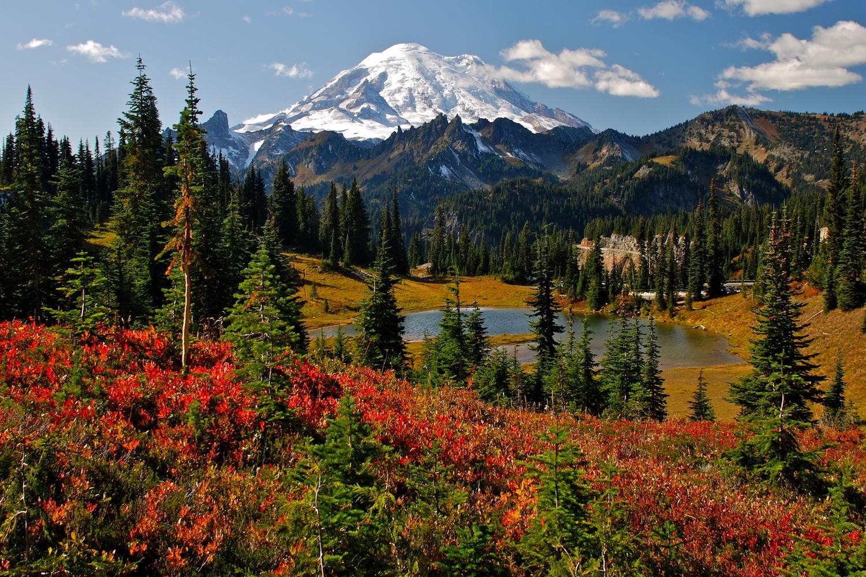 fall colors washington