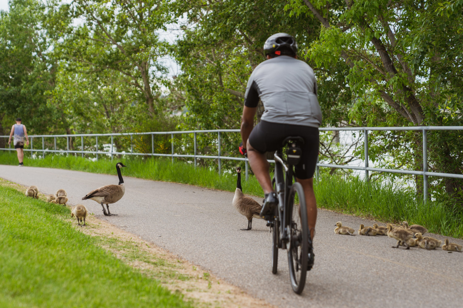 10 Of The Best Places For A Spring Bike Ride In Calgary