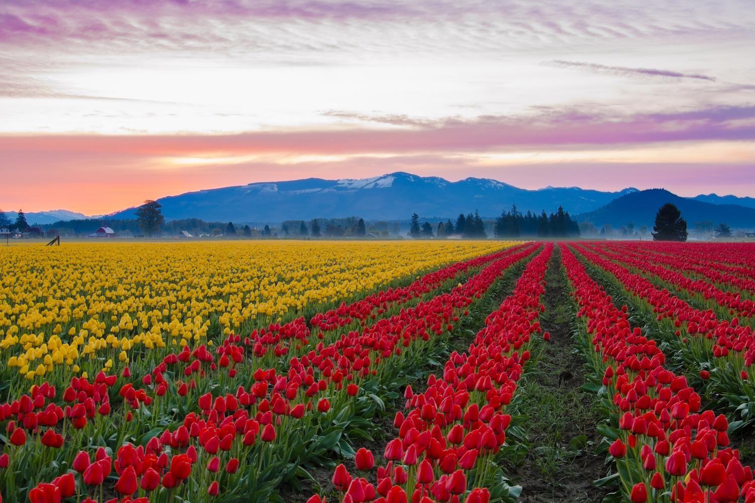 things to do in skagit valley