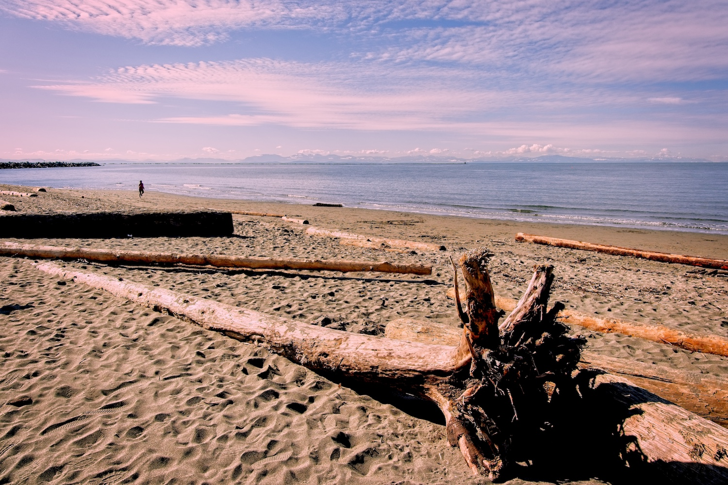 wreck beach spring viewpoints vancouver