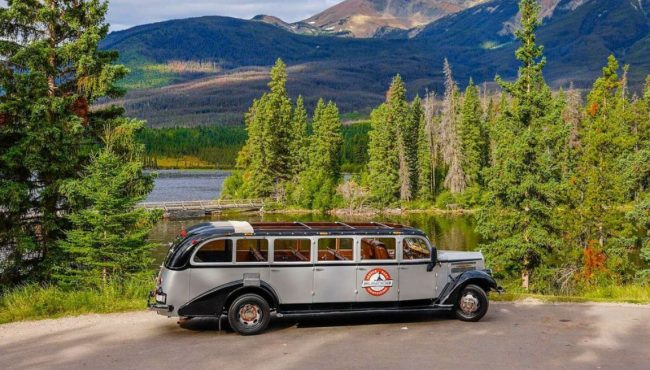 You can tour Jasper National park in vintage open-top vehicle this summer