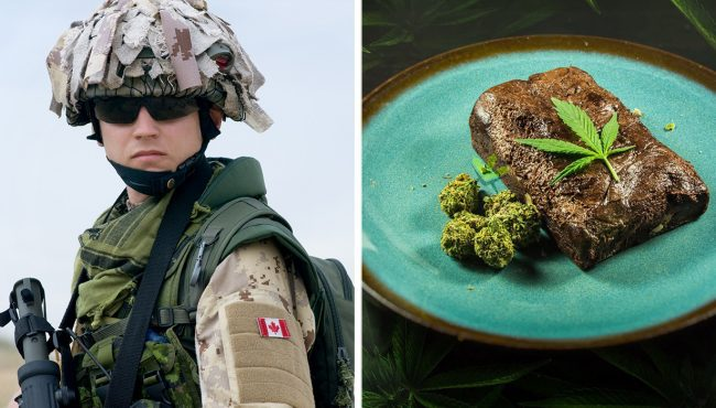 canadian army drugs weed edibles