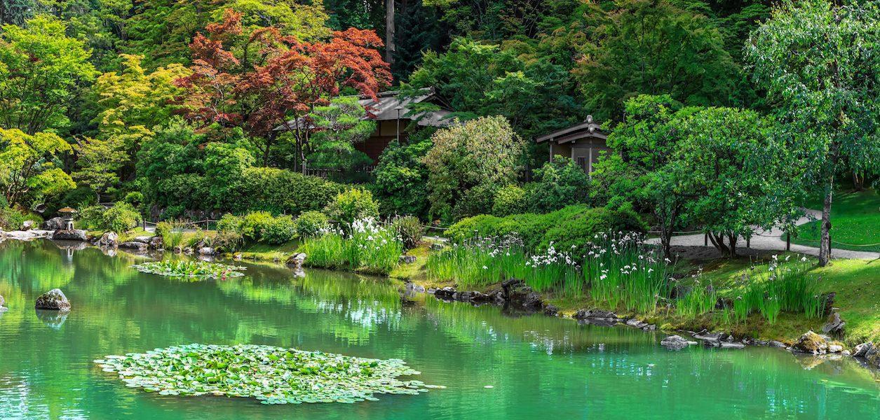 gardens seattle