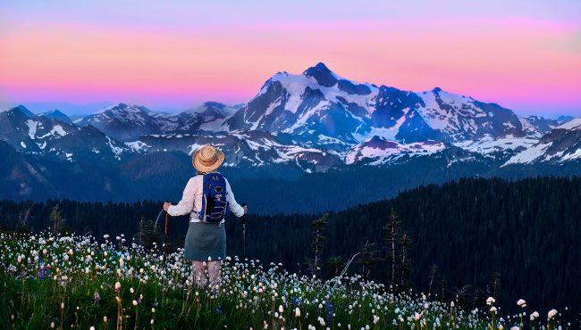 washington wildflowers hikes