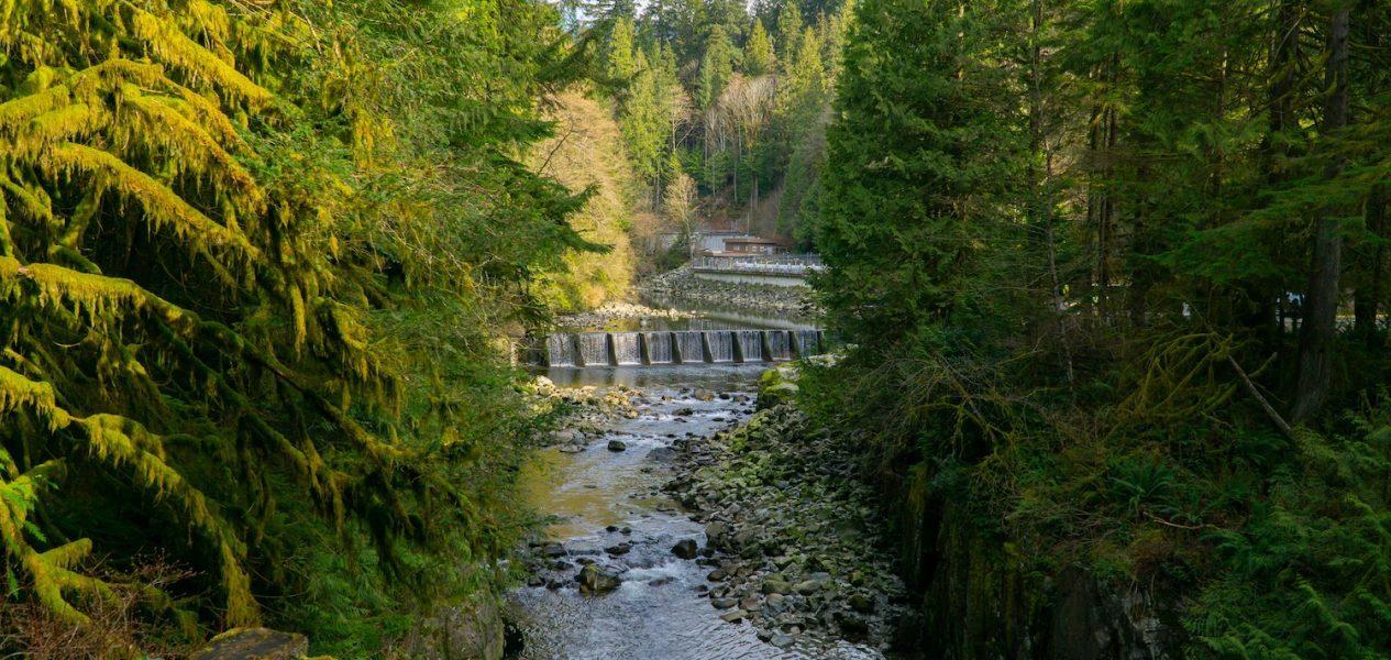 capilano river run vancouver