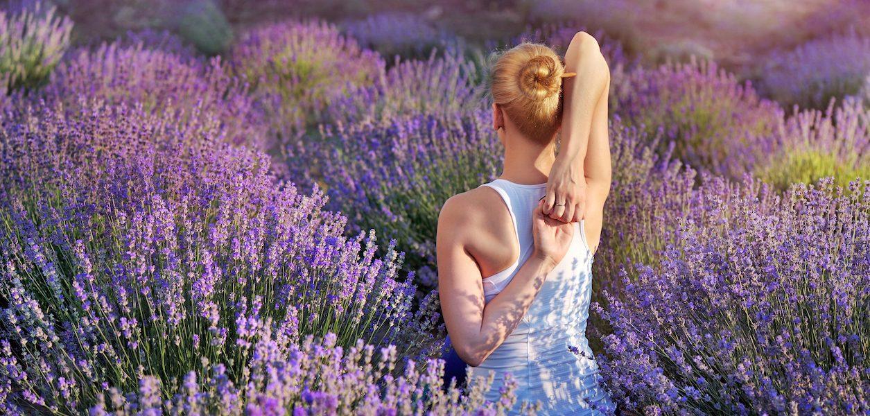 yoga lavender