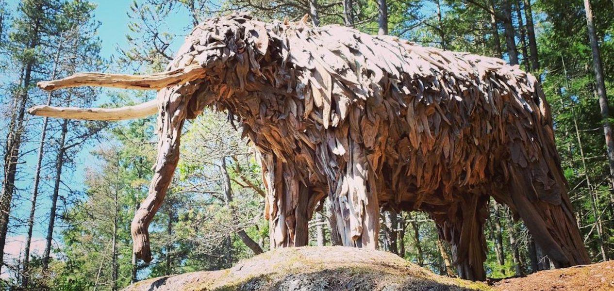 weird day trips vancouver mastodon