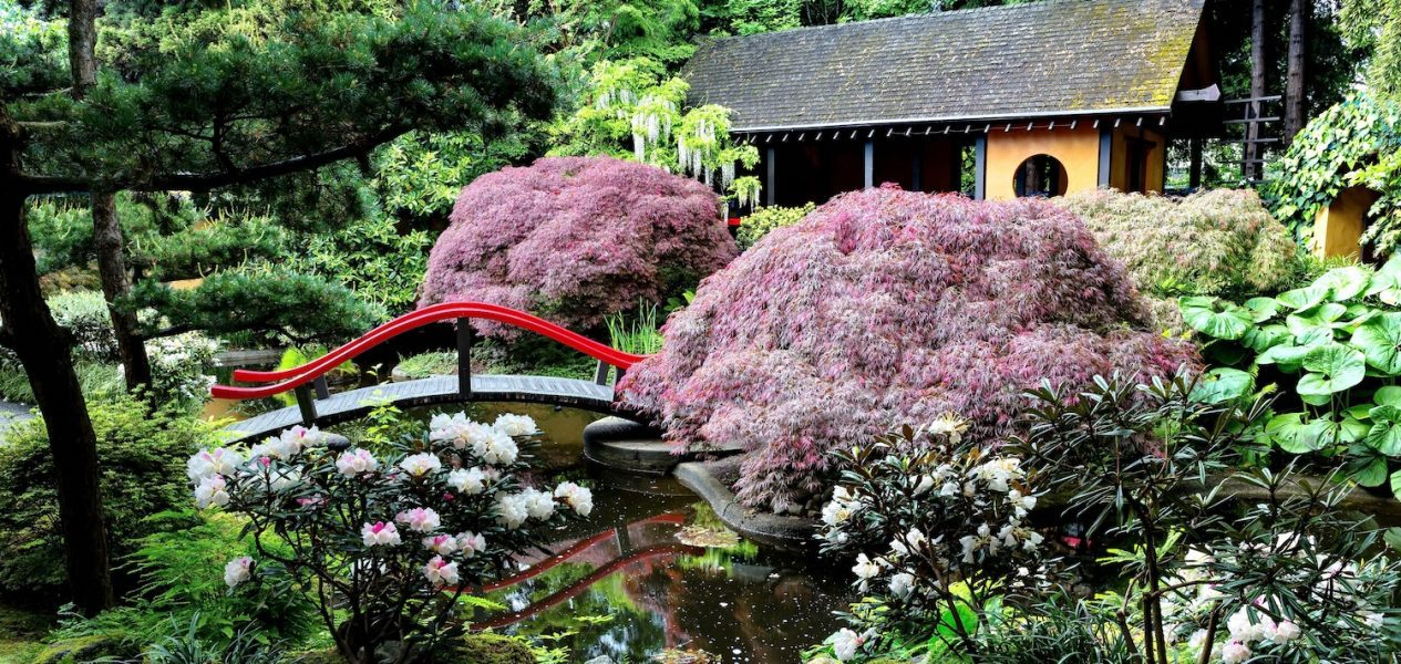 Park & tilford gardens