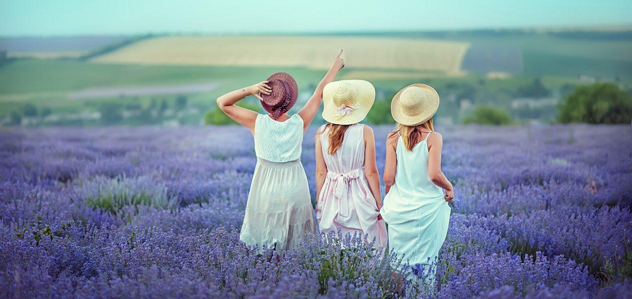 metro vancouver lavender farm