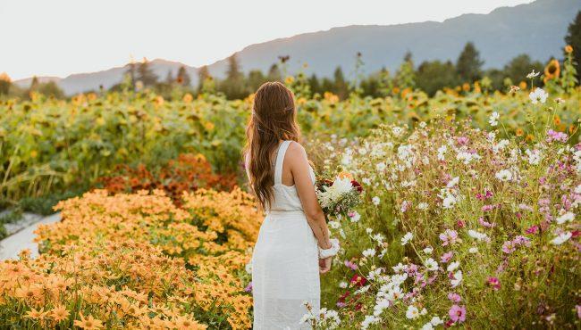 cultus lake flower fest