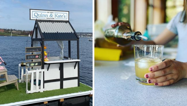 quinn & kate's lemonade stand