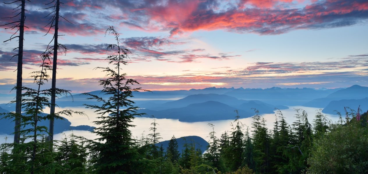 cypress mountain vancouver summer