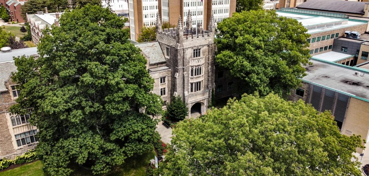 best universities in the world ranking
