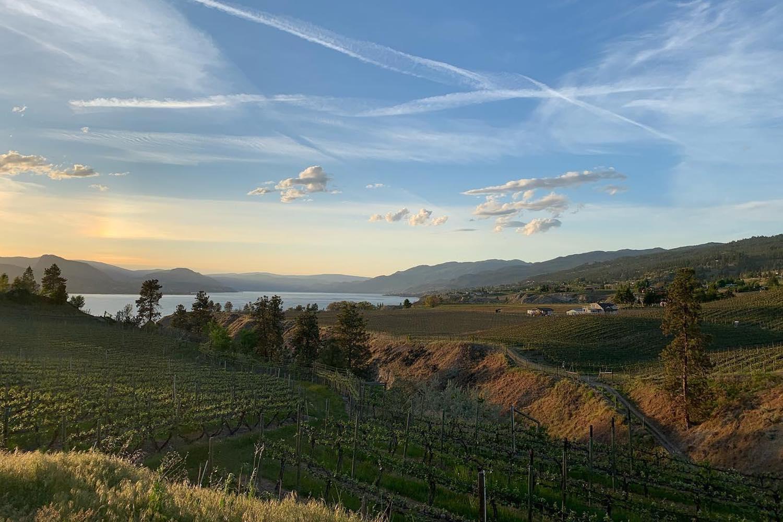 moraine winery