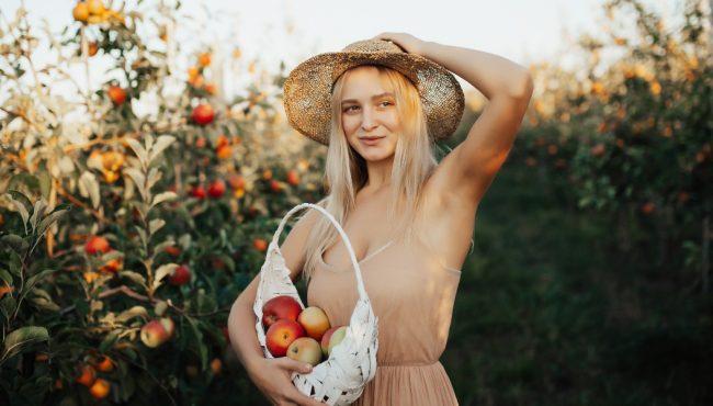 apple picking toronto