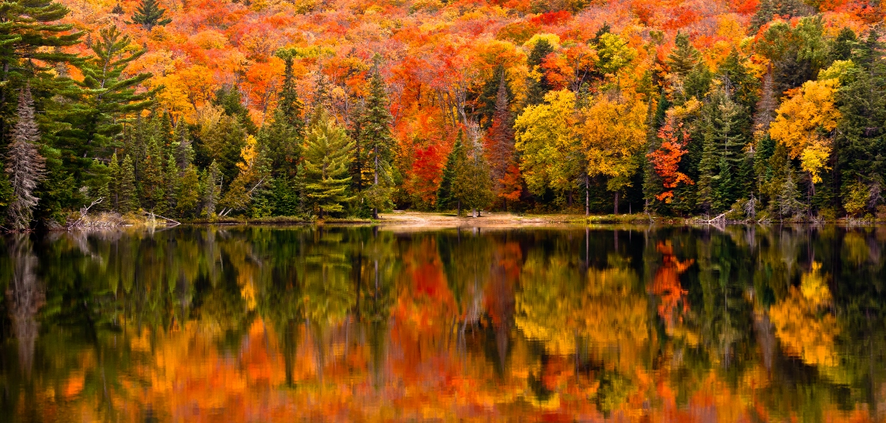 when to see fall colours in ontario