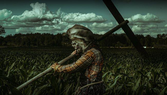 stalker farms